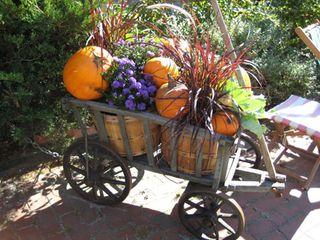 Harvest12