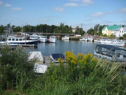 Murray-Harbor2
